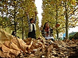 May 2010 Contest - Best Picture In this Thread-autumn-jpg